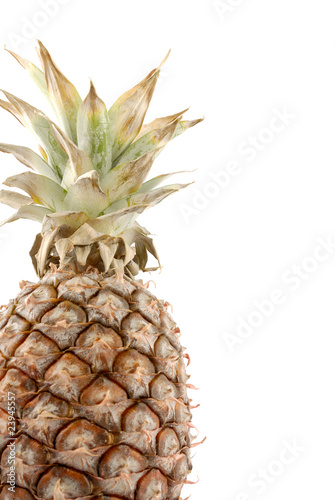 Fototapety, obrazy: Pineapple isolated on white