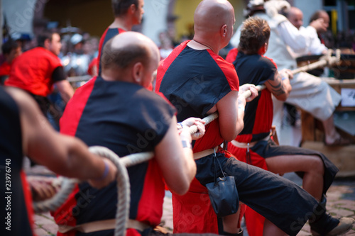 Fotografie, Obraz  Tug of War at a evening knight fight day