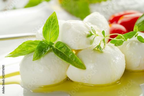 Fotografie, Obraz  mozzarella and basil over olive oil - mozzarella e olio
