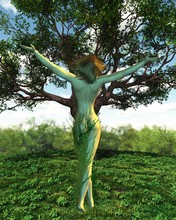 Dryad Or Tree Nymph With Her T...