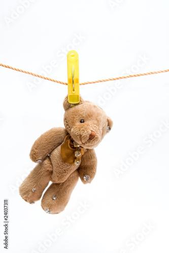 teddy bear #24037311