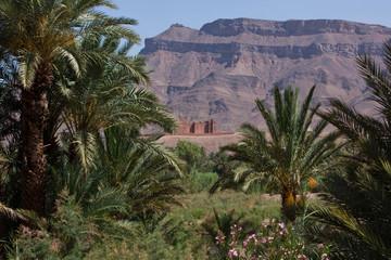 Fototapeta na wymiar Kasbah hinter Palmen