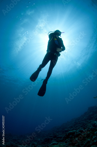 Spoed Fotobehang Duiken Scuba Diver silhouetted against the sun