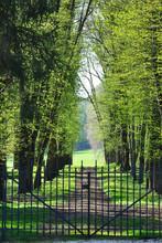 Entrance Of A Park