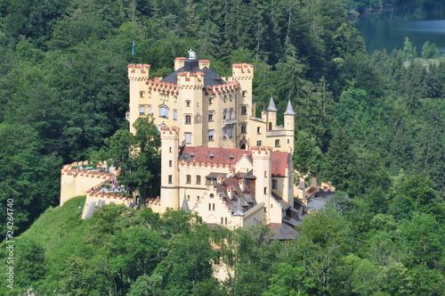 Fotografie, Obraz  Schloss Hohenschwangau