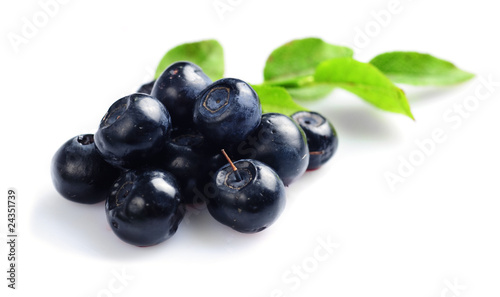 Fotografija Bilberries