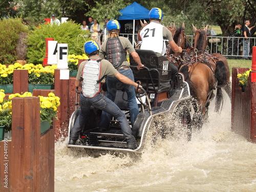 La pose en embrasure Equitation Kutsche von hinten im Wasser