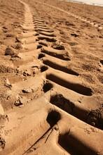Industrial Tractor Footprint On Beach Sand