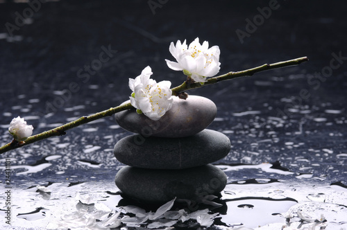 Foto op Canvas Zen Stacked therapy stones and blooming cherry with water reflection