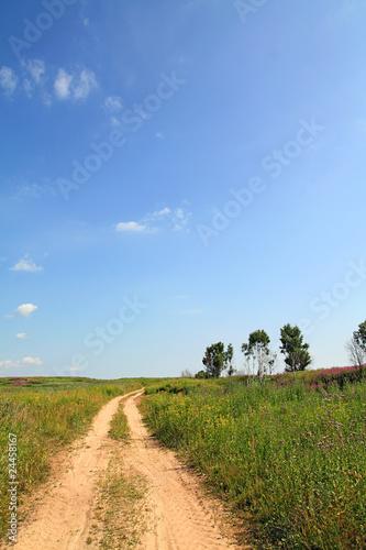 Foto op Aluminium Blauw road in field