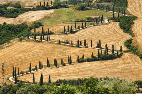 Fototapeta krajobraz krajobraz-toskanii