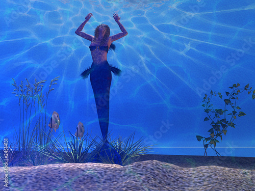 Wall Murals Mermaid SIREN