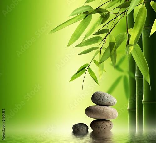 bambusowy-zakatek