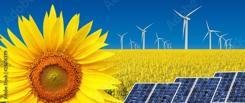 energia alternativa Canvas Print