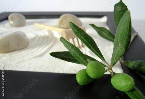 Photo sur Plexiglas Zen pierres a sable ambiance zen et olivier 5