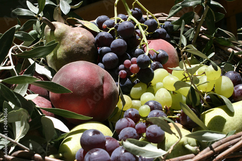 Tuinposter Zwavel geel Corbeille de fruits