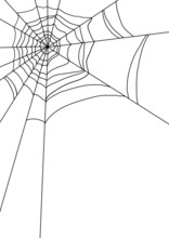 Vector Illustration Of Spiders...