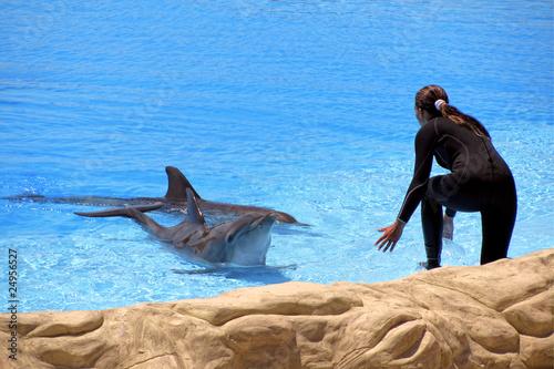 Fotografie, Obraz  Woman and dolphin