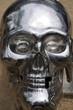 skull in iron