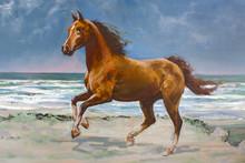 Chestnut Horse, Fragment Of Pa...