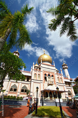 Photo  Singapore Mosque with blue sky and coconut Tree Frame