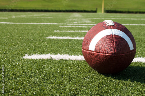 Fotografie, Tablou  Closeup of American Football on Field