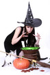 canvas print picture - young witch on halloween night