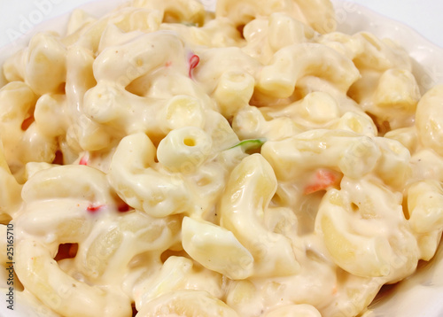 Fotografie, Obraz  Country style macaroni salad
