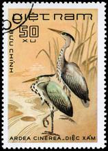 VIETNAM - CIRCA 1983 Grey Heron