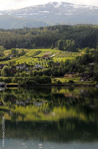 Spoed Foto op Canvas Wijngaard Reflections in Hardangerfjord at Ulvik, Norway