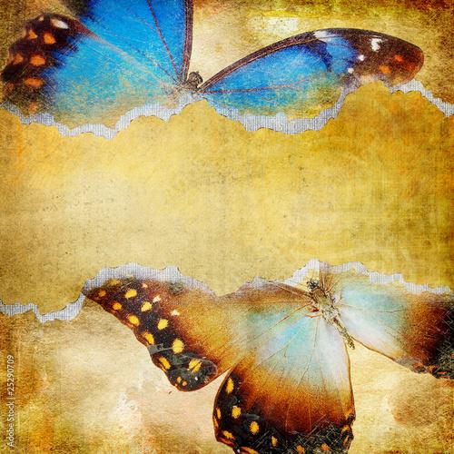 Photo sur Toile Papillons dans Grunge decorative retro background with butterflies