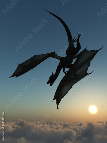 Poster Draken Dragon silhouette
