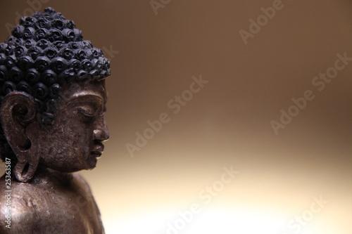Plissee mit Motiv - Weisheit des Buddhas