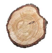 Tree Stump Isolated On White B...