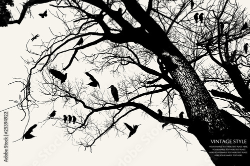 Photo sur Aluminium Oiseaux sur arbre tree and bird