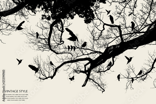 Poster Vogels op boom tree and bird