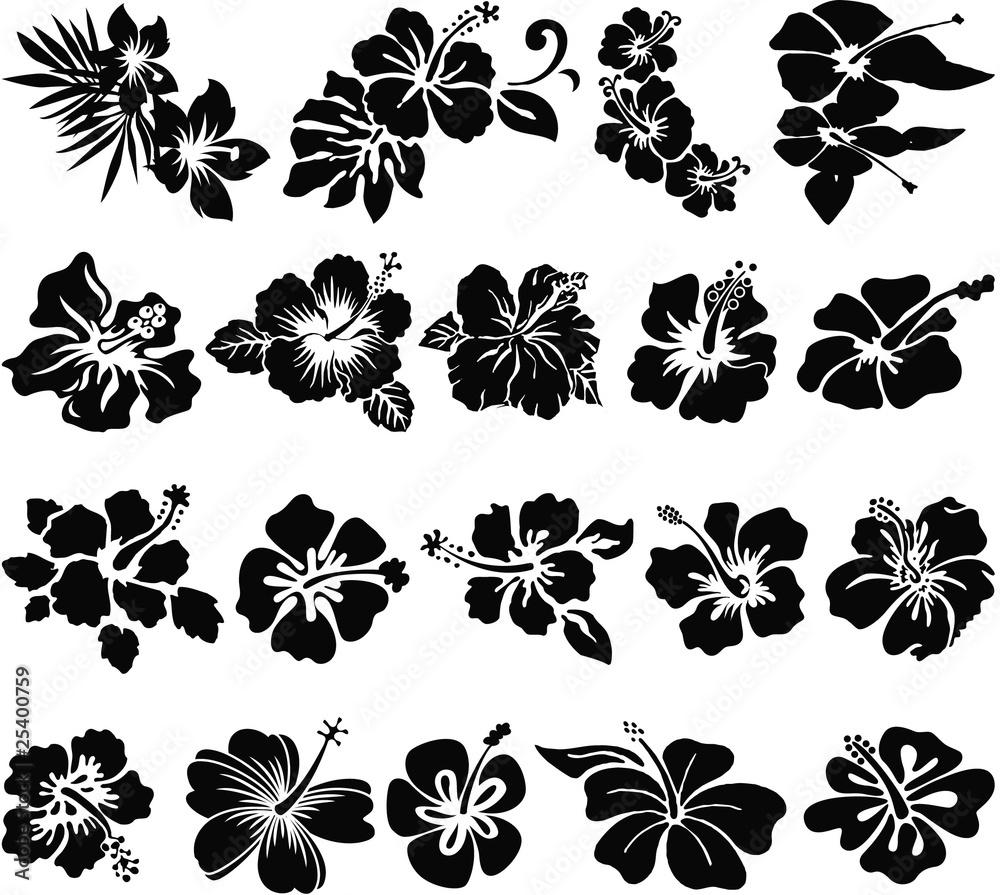Fototapeta Hibiscus flower silhouettes
