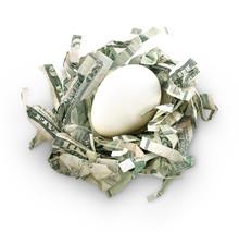Money Savings Nest Egg