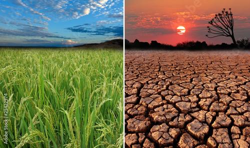 Slika na platnu Conceptual images of global warming