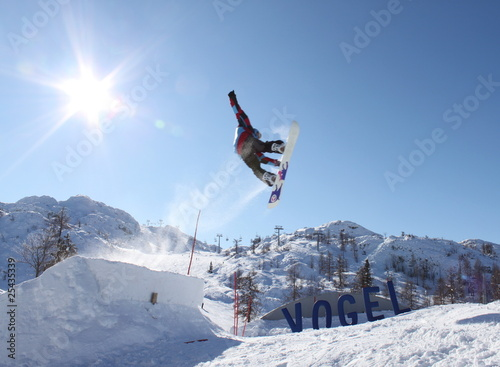 Vászonkép Vogel Snowboarder