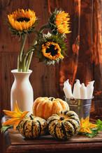 Sunflower & Gourds Still Life
