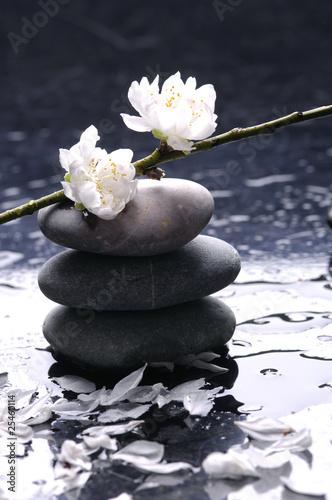 Foto op Canvas Zen Spa still life