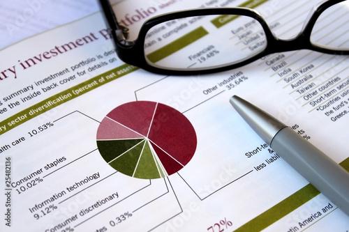 Fotografie, Obraz  financial portfolio review