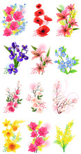 Vector Set Of Different Realistic Flowers