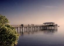 Pier In Safety Harbor, Florida