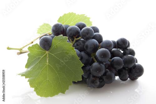 Foto  Grappe dde raisin noir