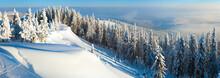 Snowdrifts Winter Panorama Landscape