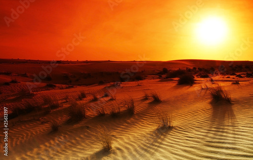 Photo sur Toile Desert de sable Extreme desert