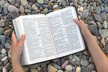 Female Hands Holding Open Bible