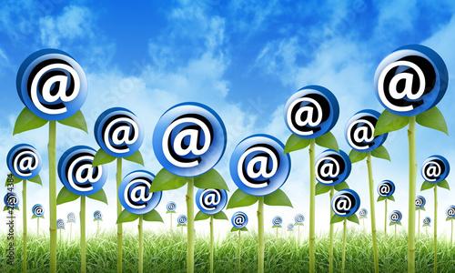 Fotografie, Obraz  Email Internet Inbox Flowers Sprouting